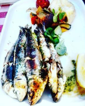 les sardines de chez Magne